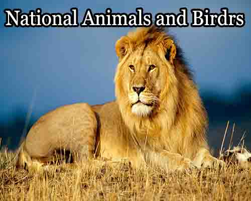 List of National Animals and Birds of different Countries