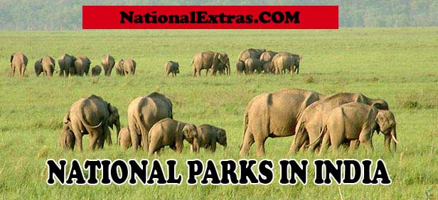 national parks in india latest