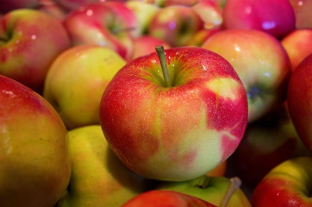 German Apples Day german apple recipes apples a day keeps the doctor away apples a day diet is it bad to eat 3 apples a day french apples english apples german fruit german grapes